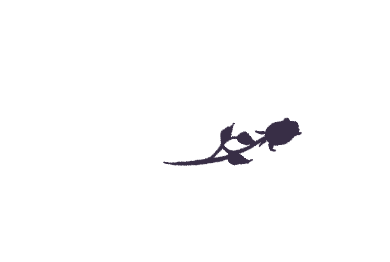 The Susie Show Weddings